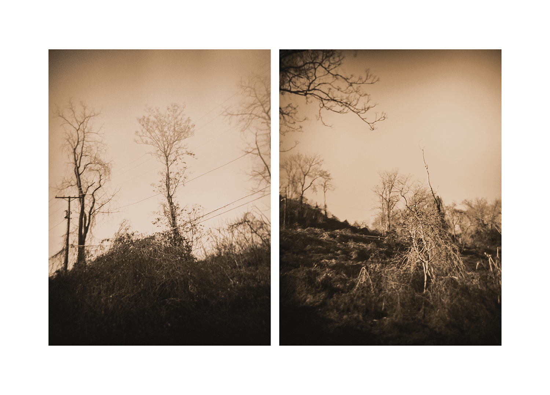Winter-Vecchi-23.jpg