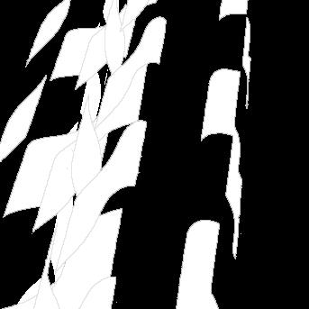 Band image I.jpg