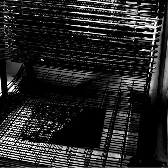 keleloko_printmaking 03.jpg