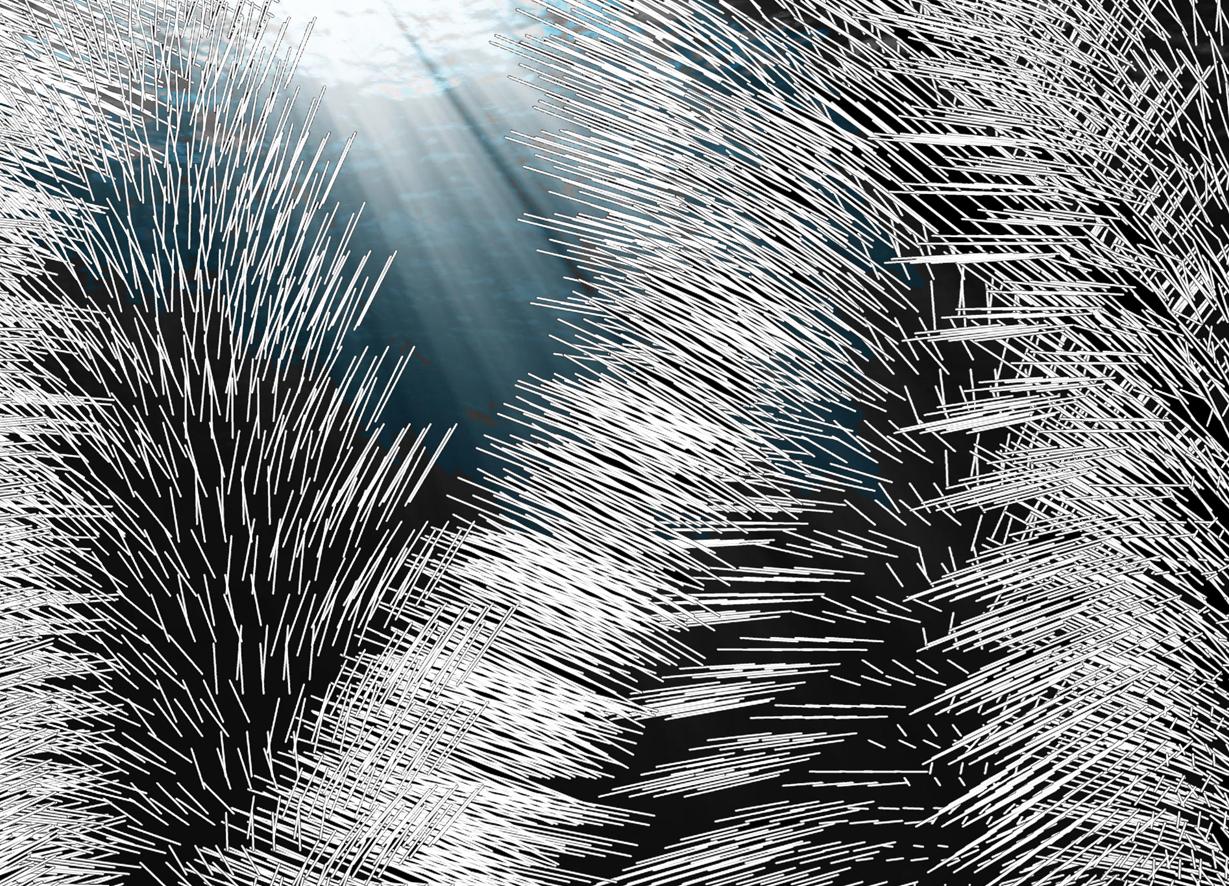 The Gateway - 2018 - Digital drawing/ Photography - 200 x 200 cm