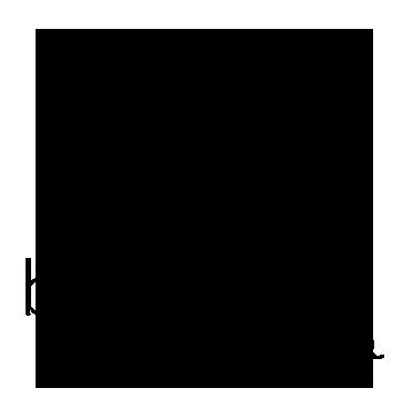BFW.logo.transparent.png