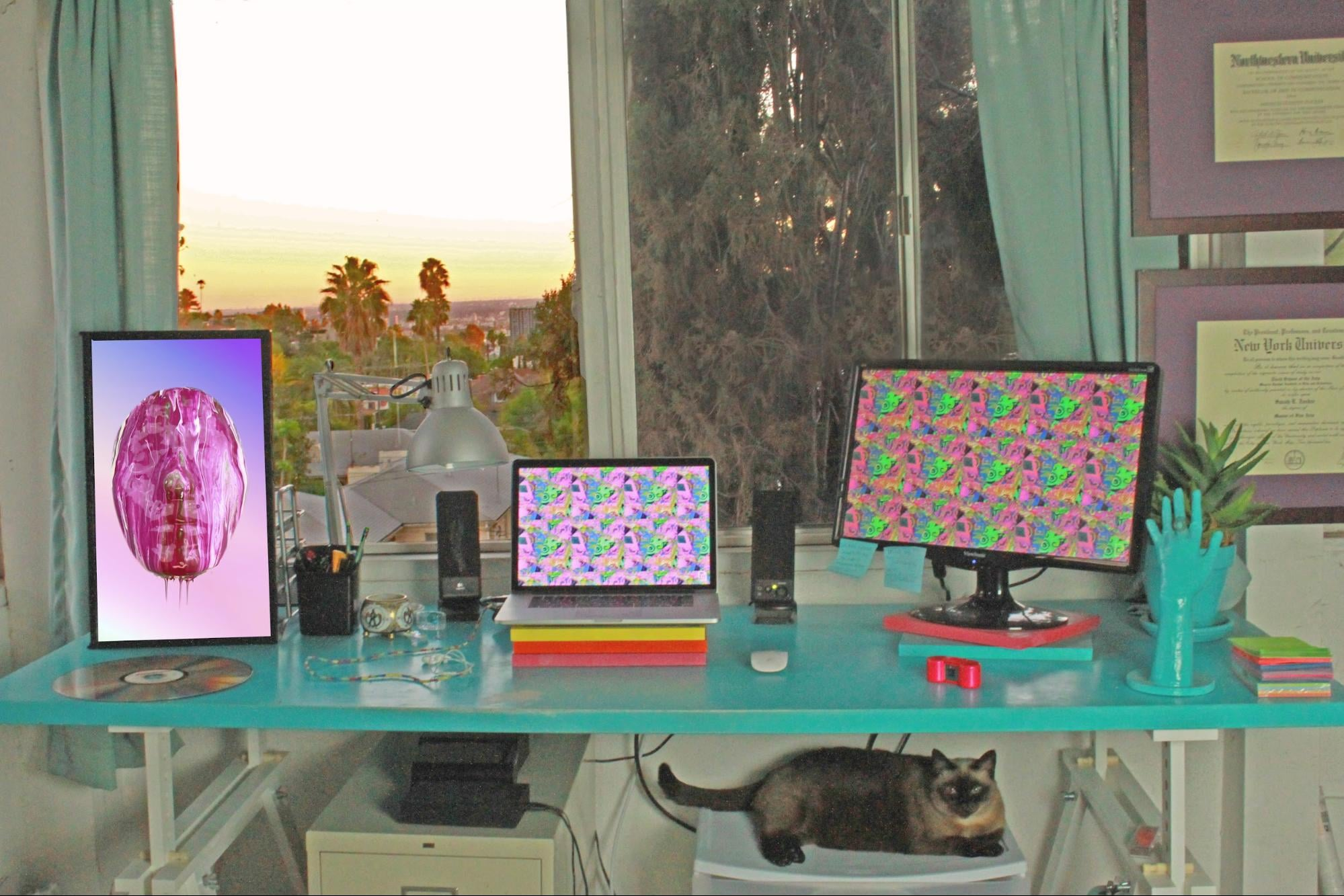 My workstation, complete with Electric Objects EO1 and  feline fuel source .