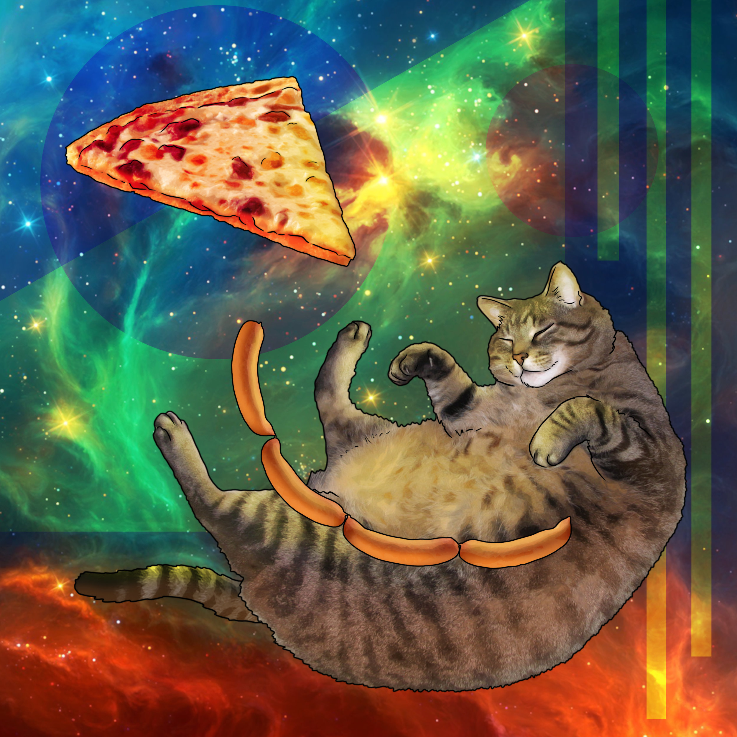 Cosmic Cat02.jpg