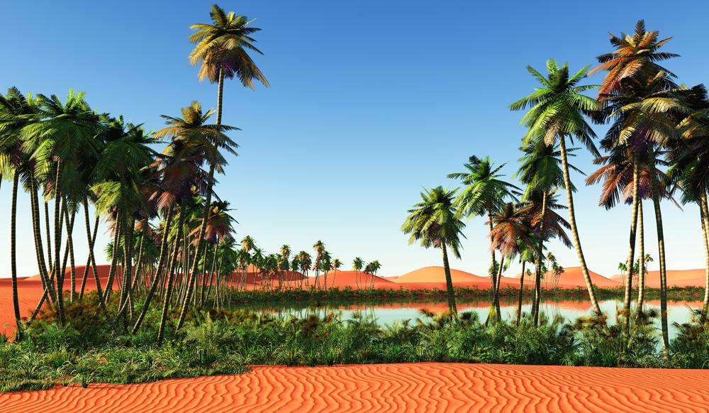 Desert Oasis.jpg