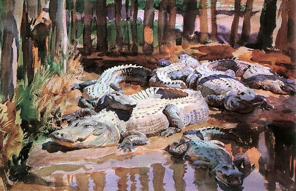 Sargent-Muddy-Alligators
