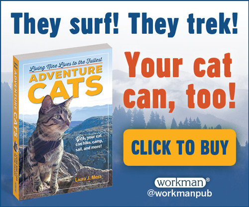 Train Your Cat To Walk On A Leash Book