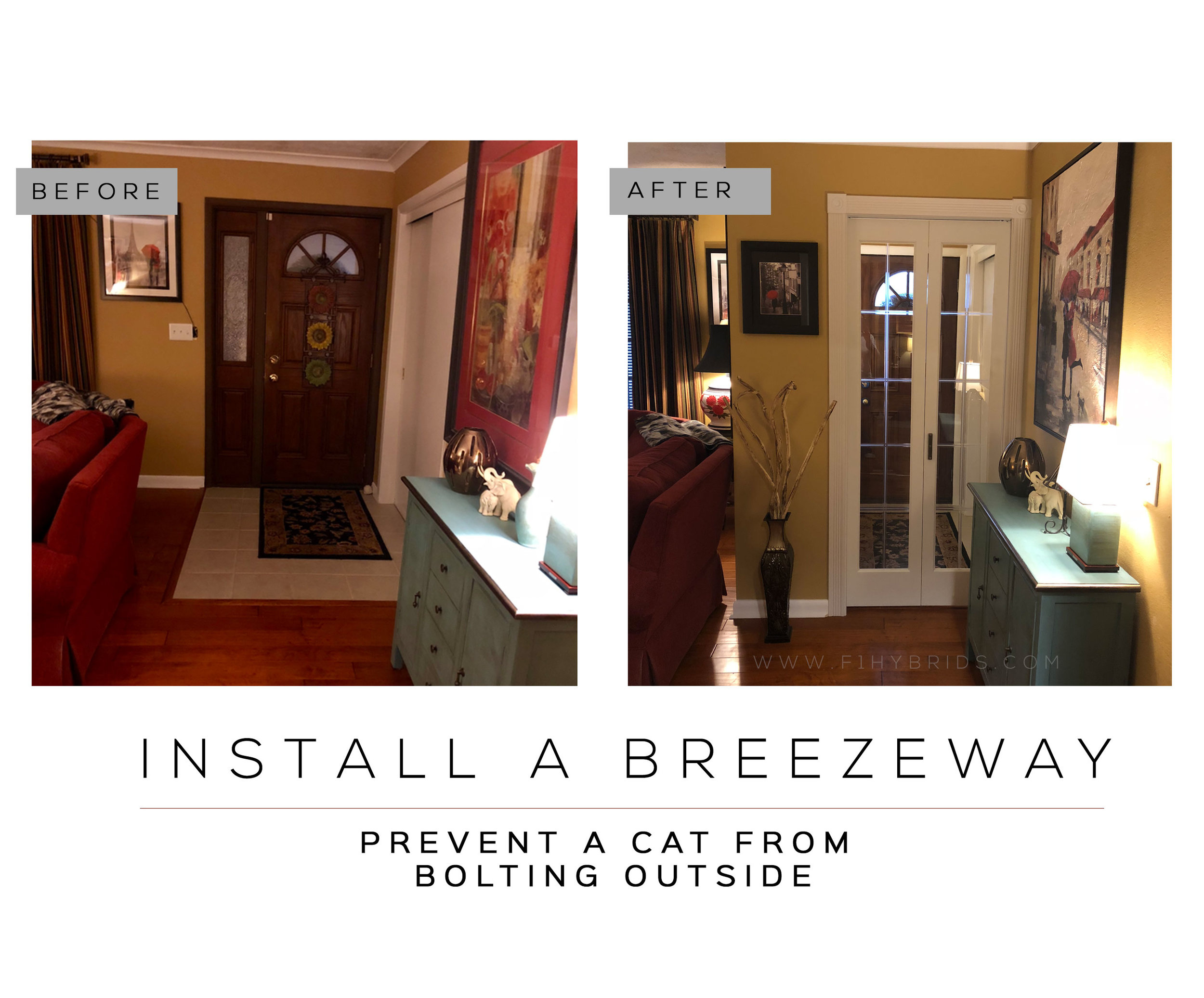 Install a breezeway to prevent a cat from escaping outside.