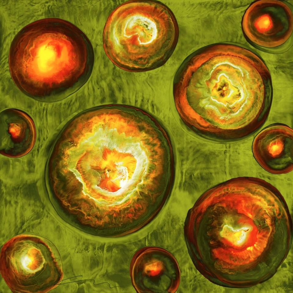 Burst Series Giclees