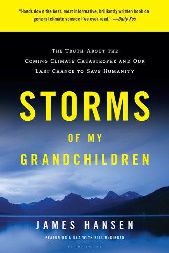 Storms of My Grandchildren.jpg
