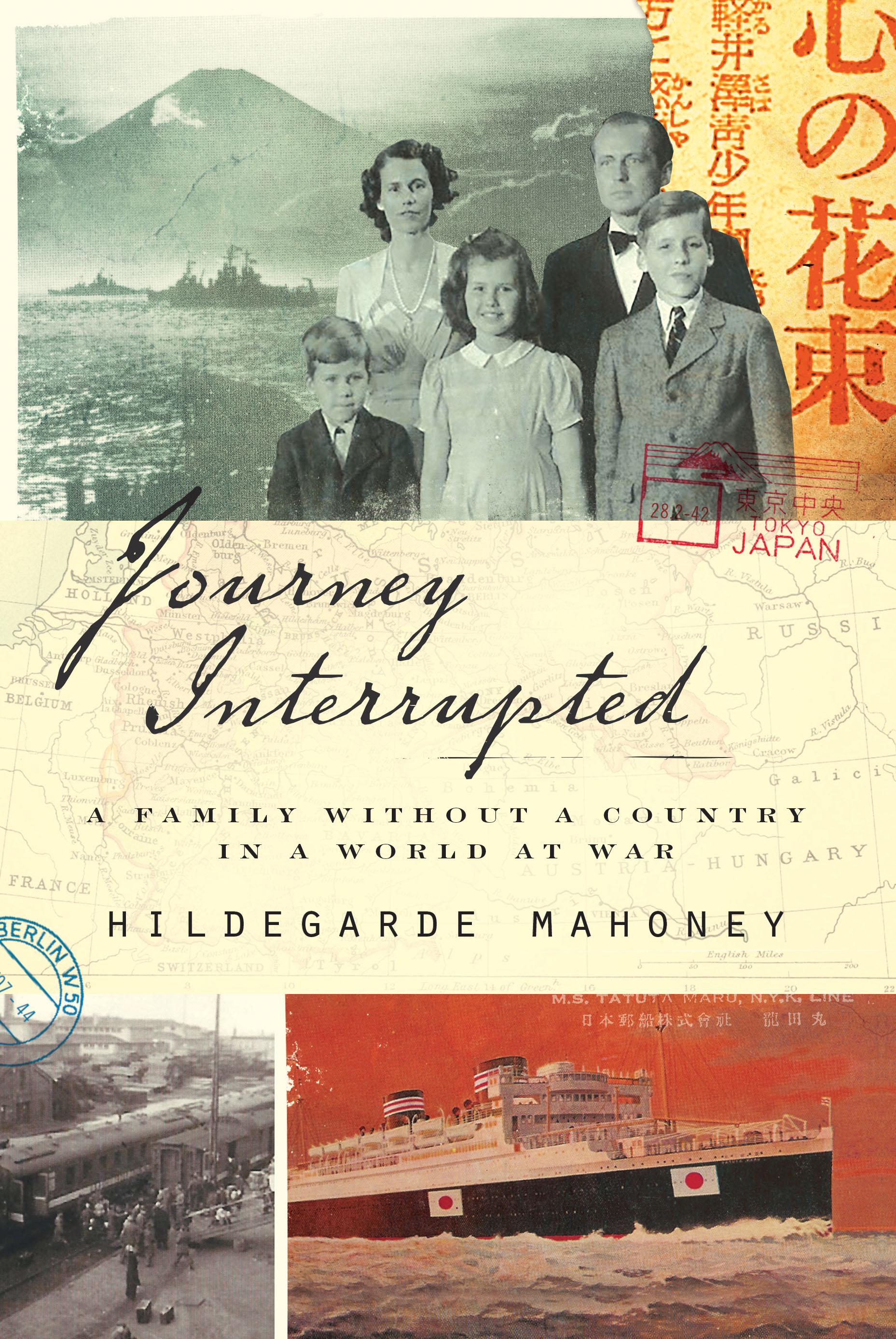 Journey Interrupted .jpg