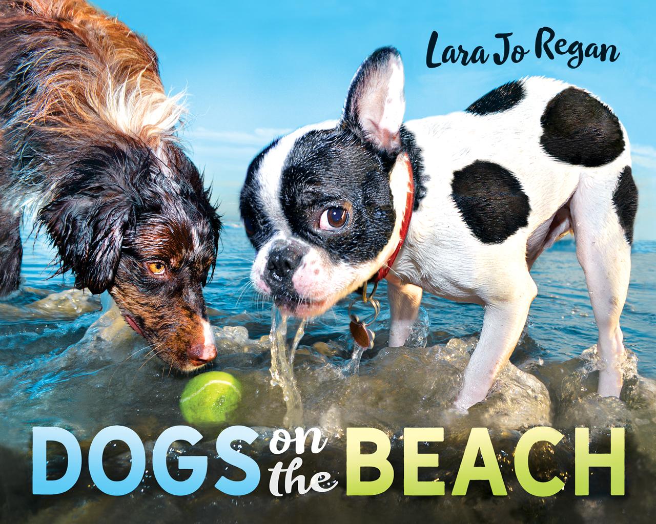 Dogs on the Beach .jpg