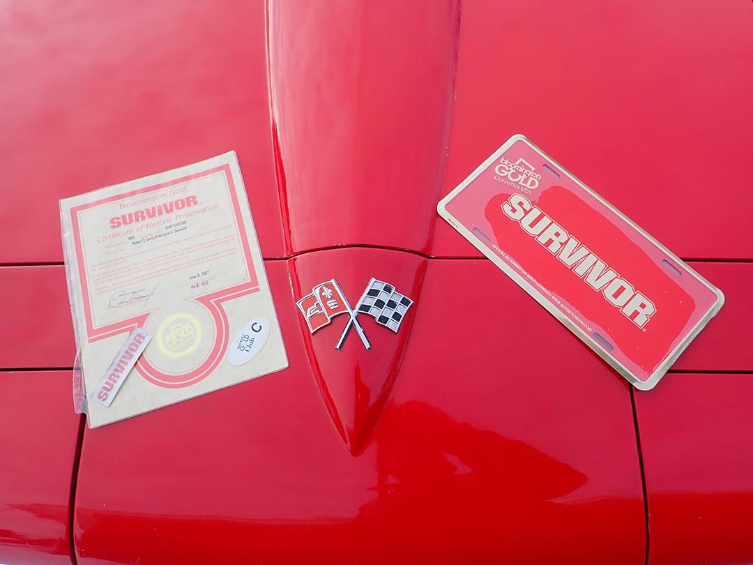 14 1965 Chevrolet Corvette Curry.jpg