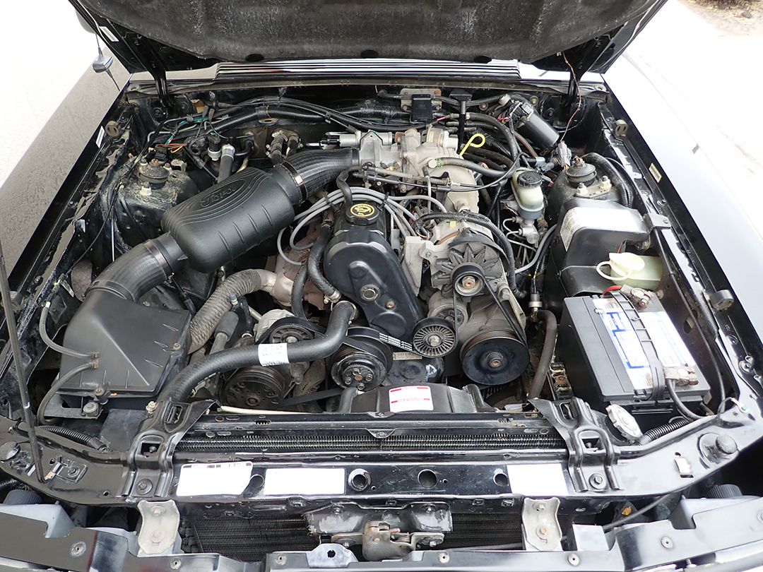 12 1988 Ford Mustang Conv STPC.jpg