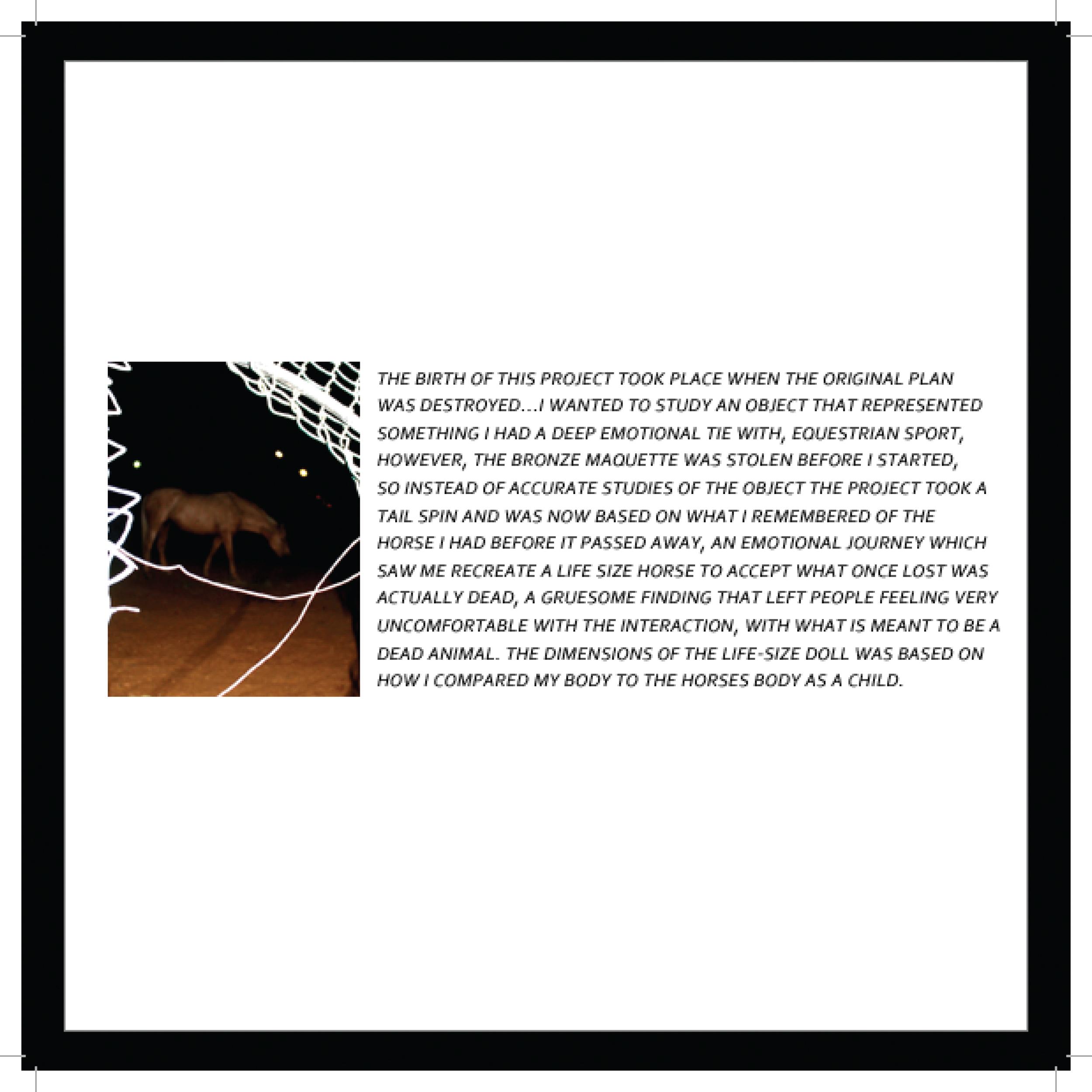 Portfolio (3of4)-1.jpg