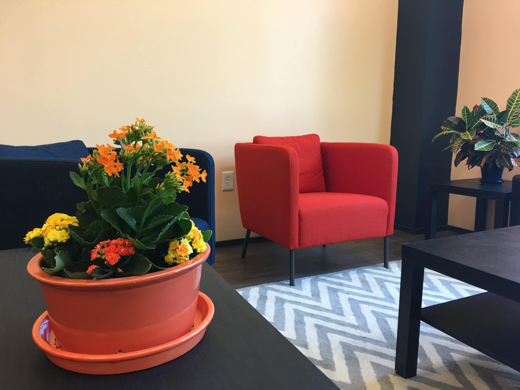 Waiting Area With Flowers.jpg