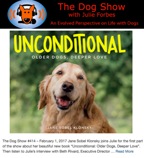 THE DOG SHOW (FEB 2017)
