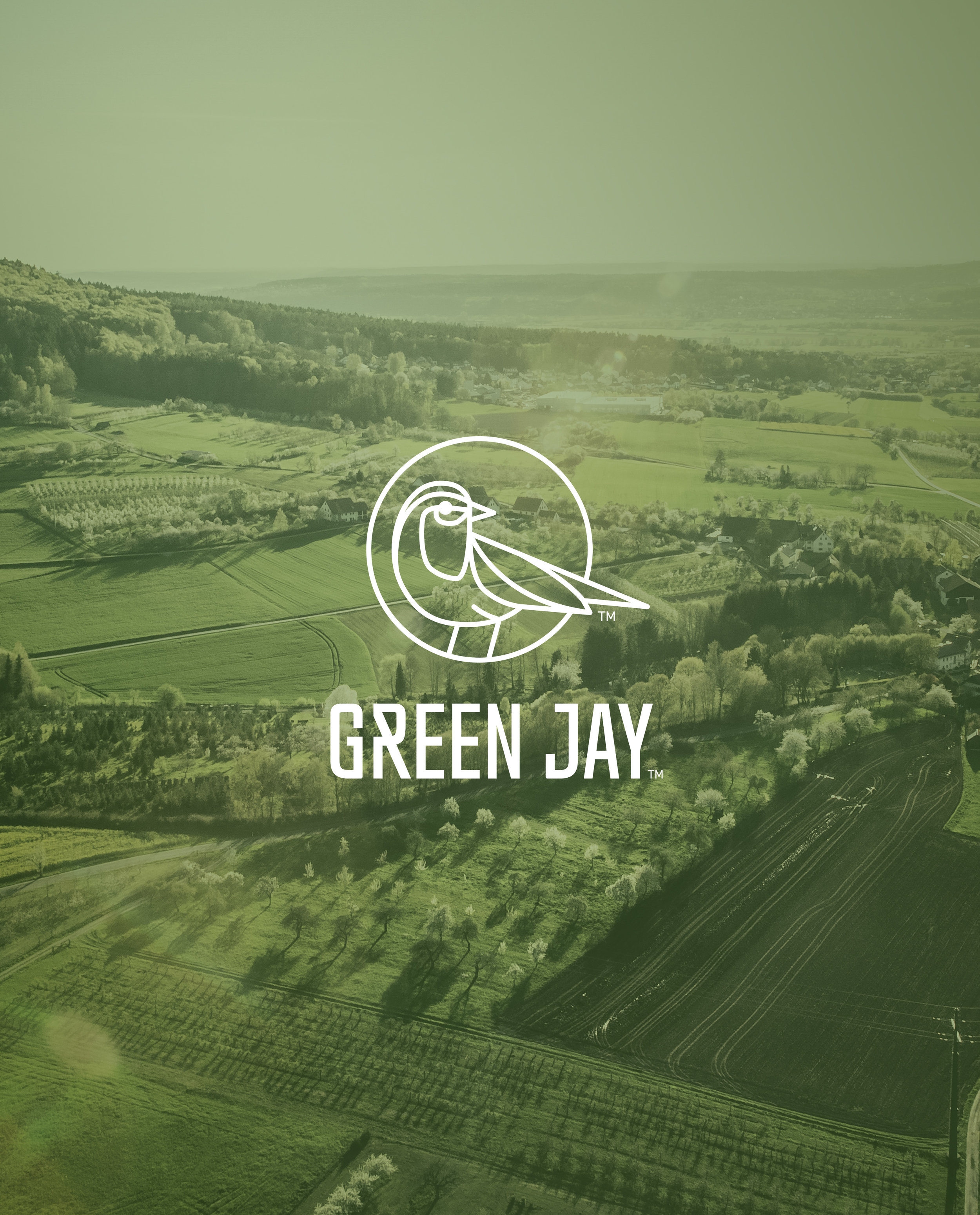 GREEN JAY   branding - packaging - product