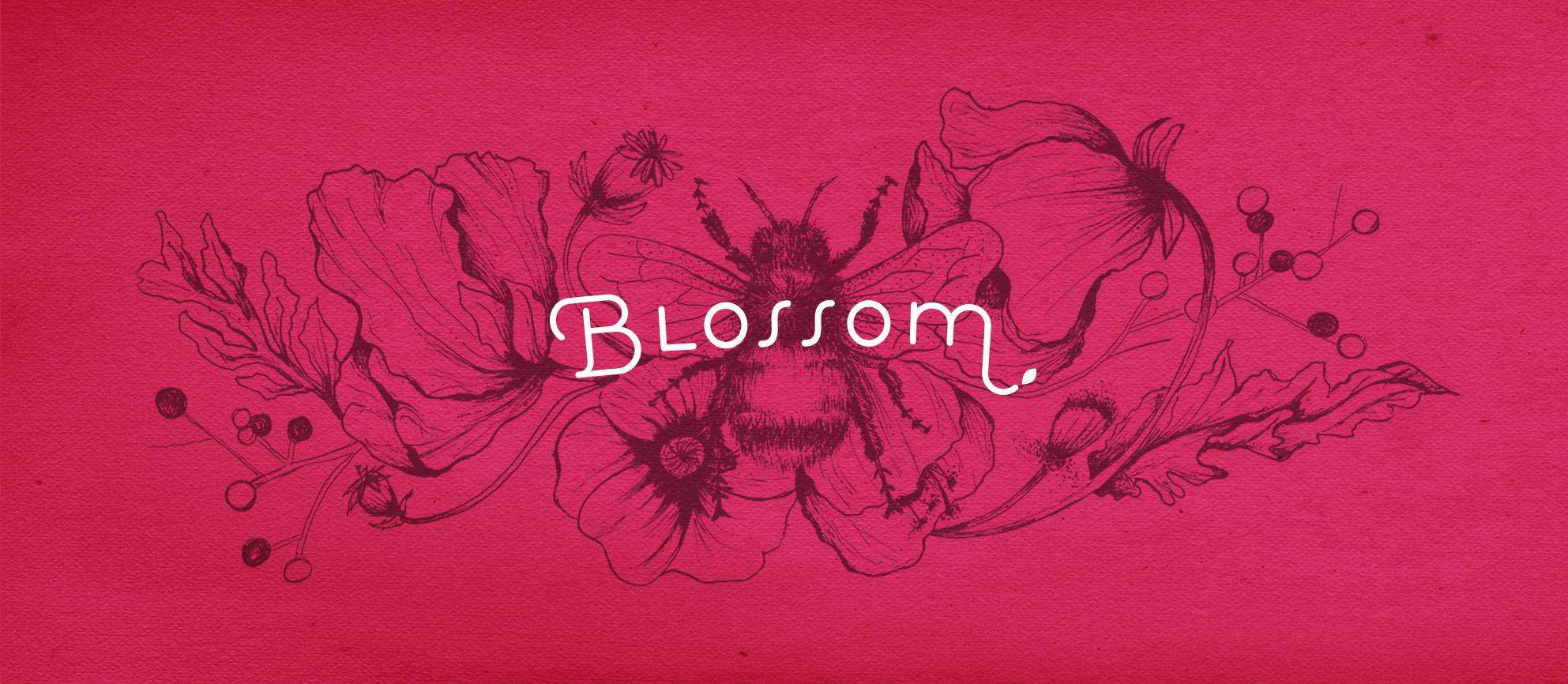 BLOSSOM   branding - packaging