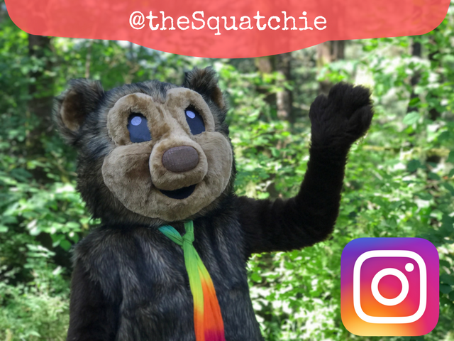 Follow the Squatchie for endless forest fun!