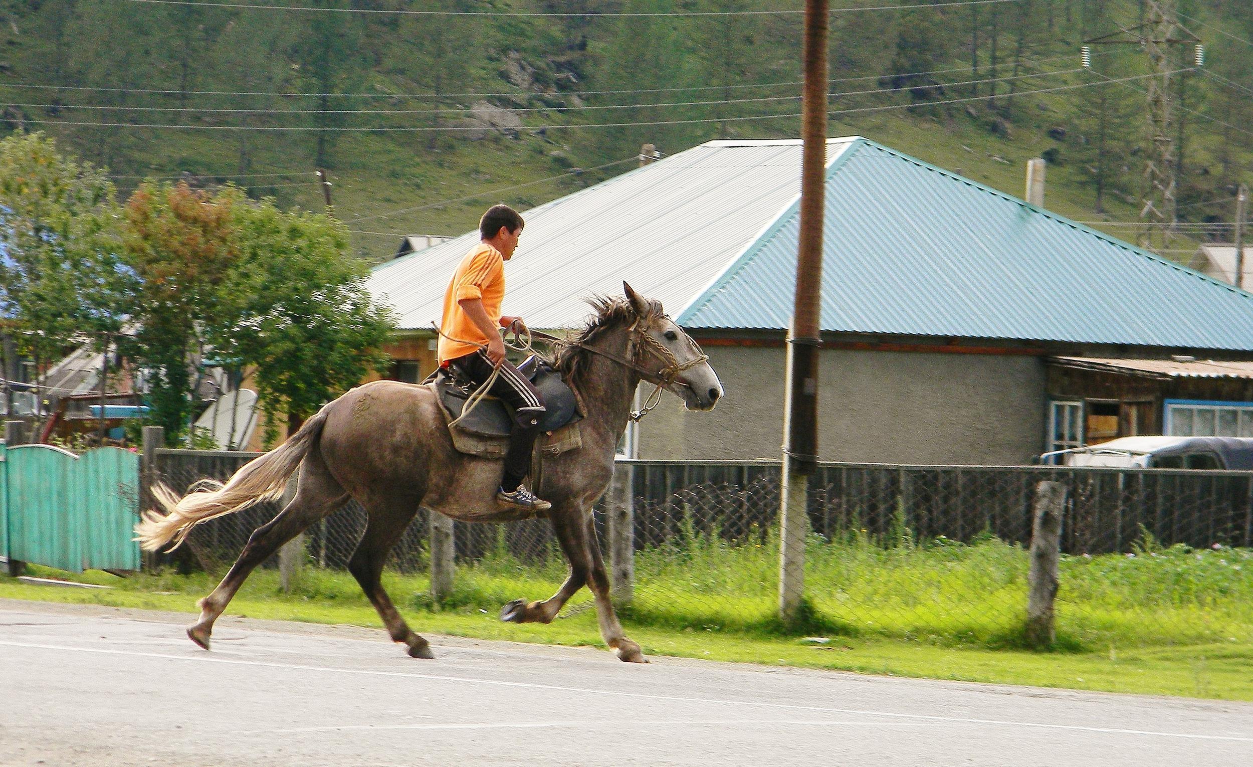 алтаец на лошади