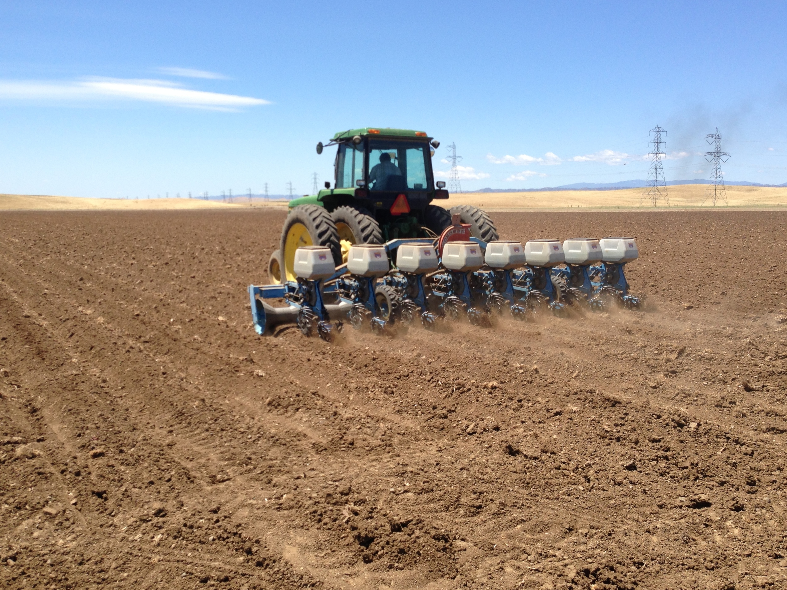 Production is planted with the latest, state of the art precision planters in order to establish uniform growing populations, seed size and quality.