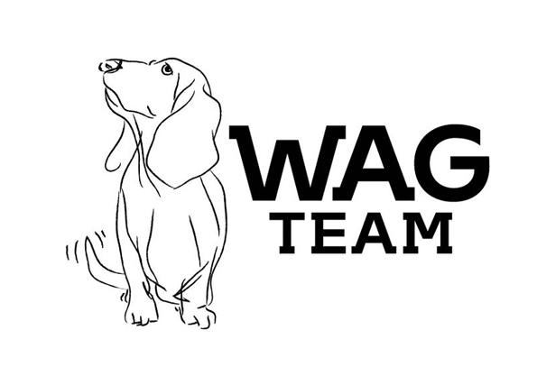 Wagteam FIX.png
