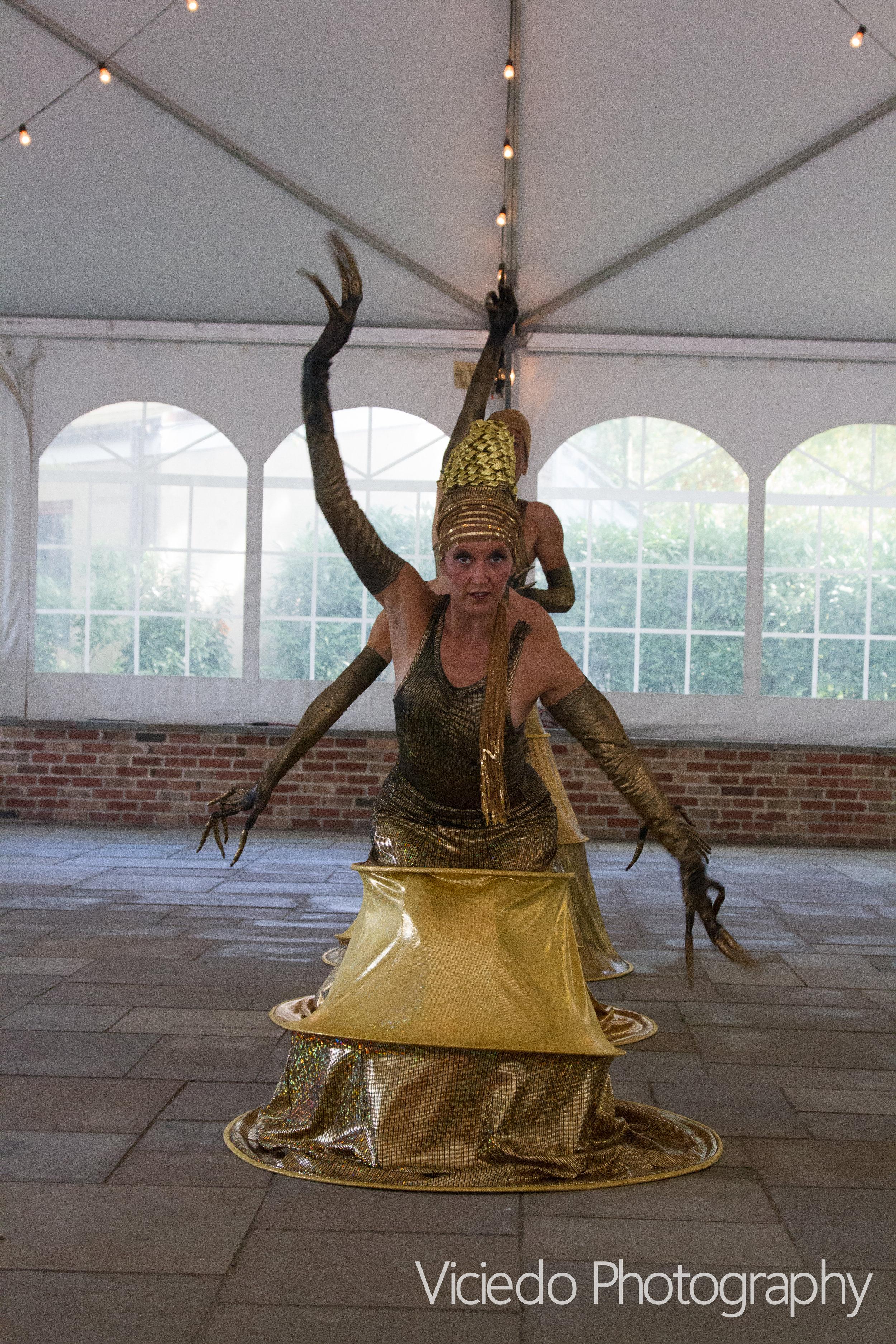 Art of Motion Dance Theatre. Viciedo Photography.Shakti photos AOMDT/choreography: Lynn Needle. Costume Design: Annie Hickman