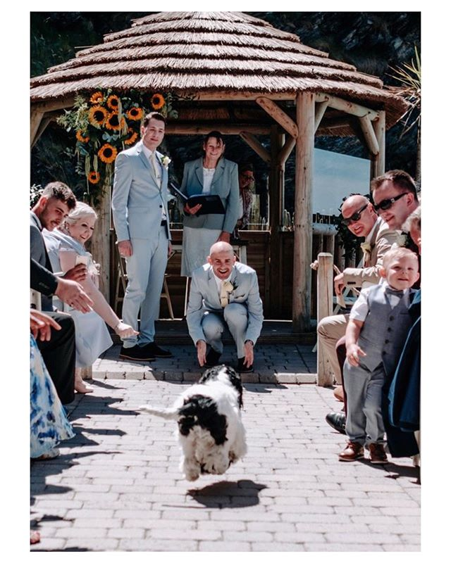 Surprise Wedding guests #dogsatweddings #bestfriend #bestdog . . . . . . . . . . . . #adventureweddingphotographer #destinationwedding #authentic #organicwedding #storyteller #unposed #documentarywedding #candidwedding #love #naturalwedding #greenwedding #fujiweddingphotographer #fujifilm_uk #lifesmomentscaptured #tellingstories #storiesthroughalens #chesterwedding #chesterweddingPhotographer #cheshirewedding