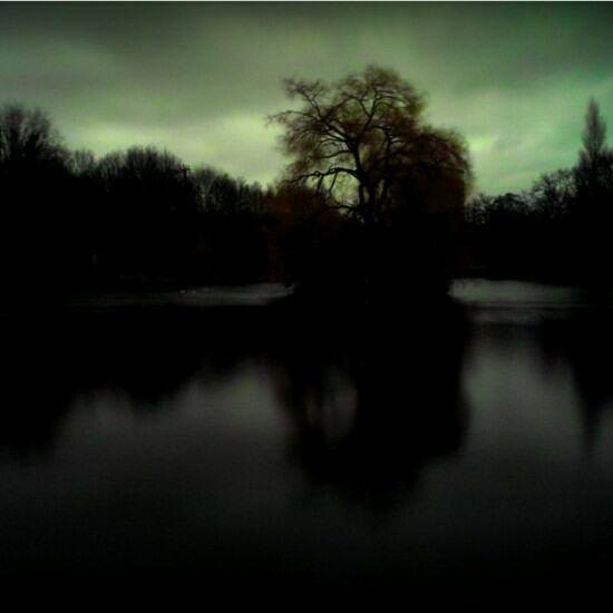 From Tarkovsky's polaroids.