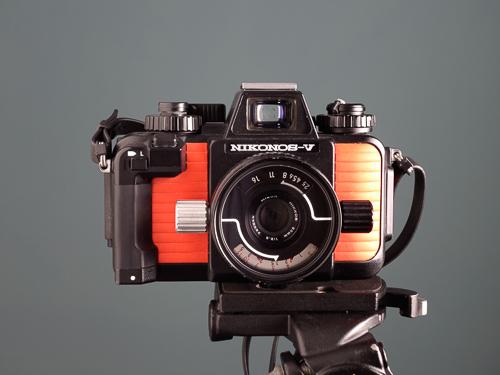 Nikonos V underwater camera with Nikkor 35mm f/2.5 lens  Copyright © 2014 Gonçalo Martins