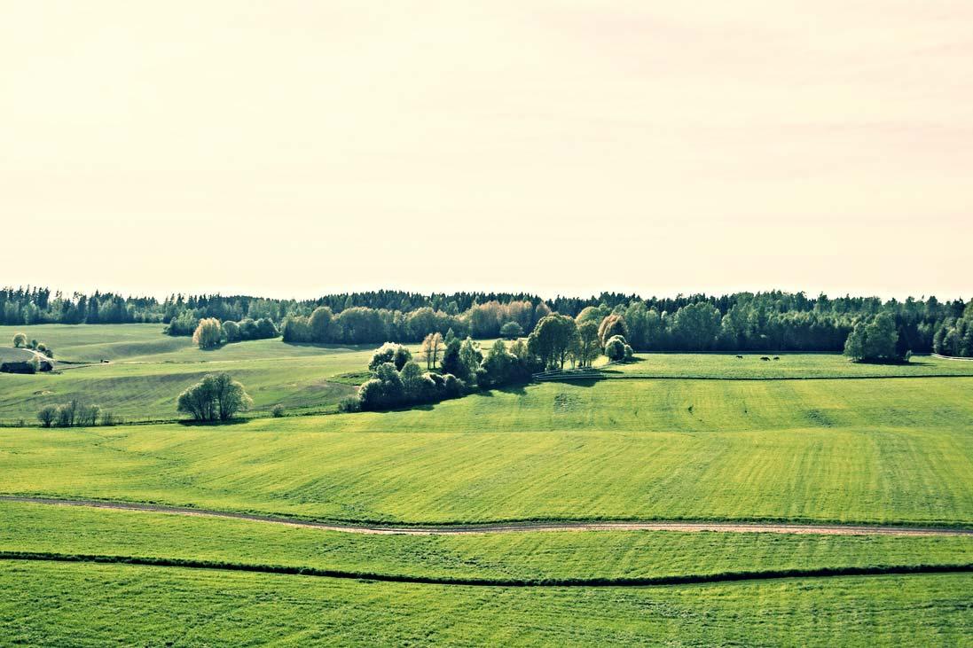 Landlige-omgivelser-i-nærheten-av-Oslo-3.jpg