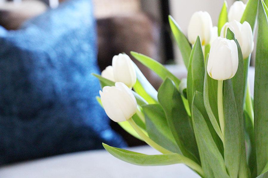 flowers-decoration-tulips-splendor.jpg
