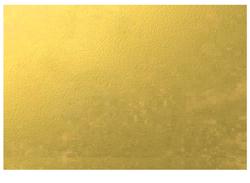 ORC-LP-250x183.png