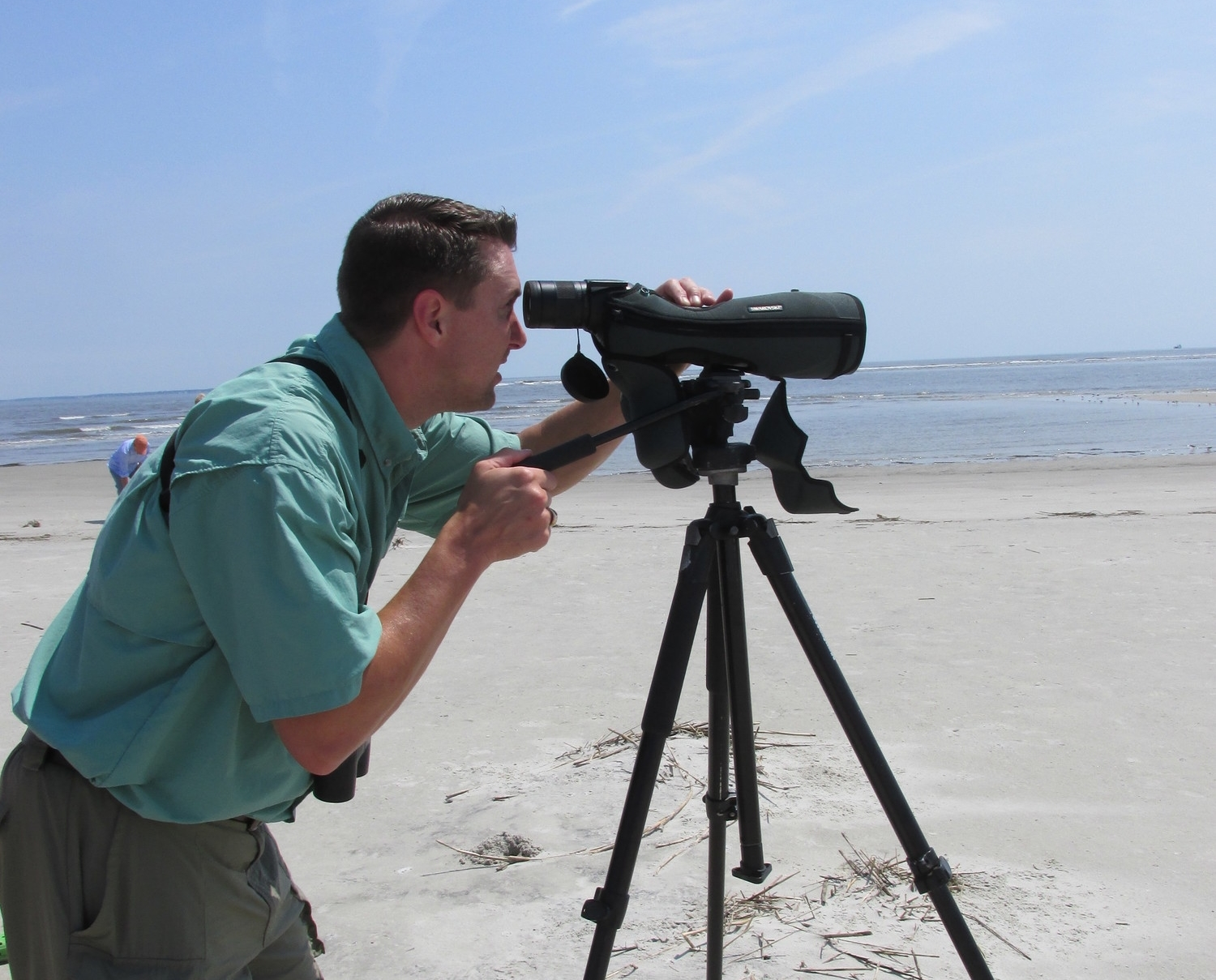 Teaching a SCWF Palmetto Pro Birder class at Harbor Island, SC on barrier island ecology, with a focus on shorebirds and horseshoe crabs.