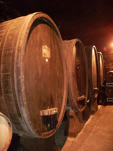 It is also possible to buy great inexpensive wine in most of the cities around in Castelli Romani. Our favorite for this is the following wine make in Genzano:    Cantina Costantini   Via Giuseppe Garibaldi 25/27 Genzano di Roma