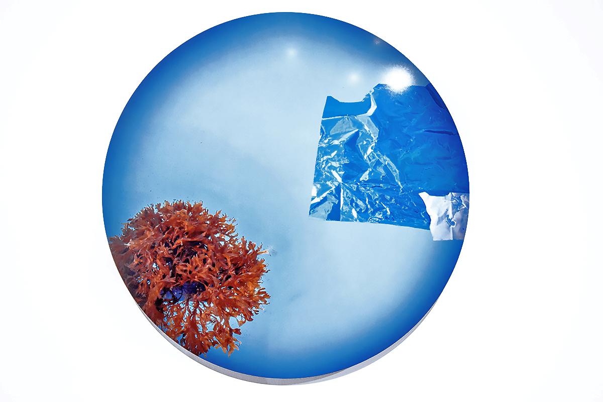 coralballoon2.jpg
