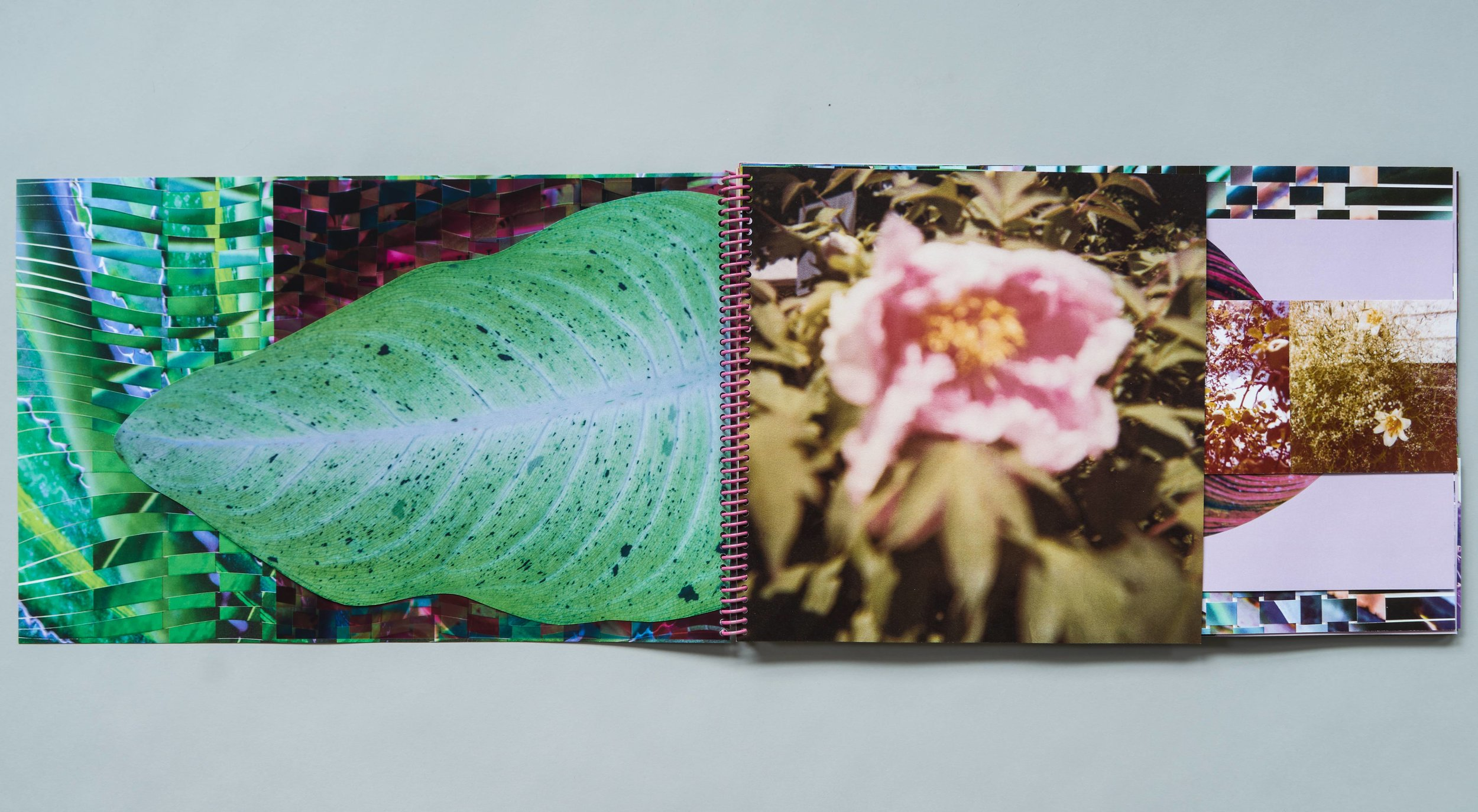 cuttings_book_001.jpg