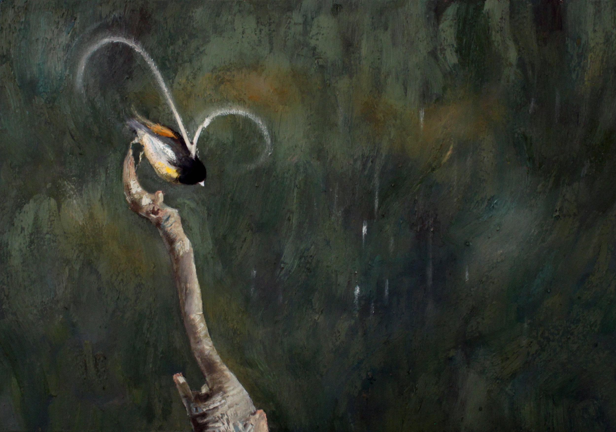 GUIDO SALIMBENI, Bird Jumping