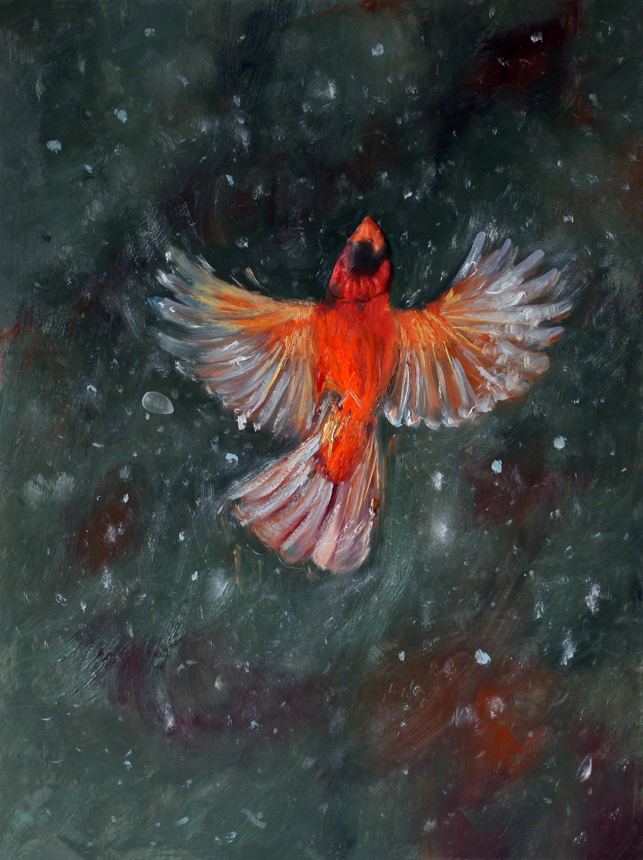 GUIDO SALIMBENI, Red Cardinal Flying Up