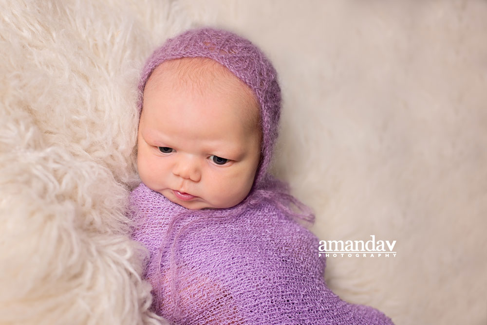 swaddled in purple in newborn photography session