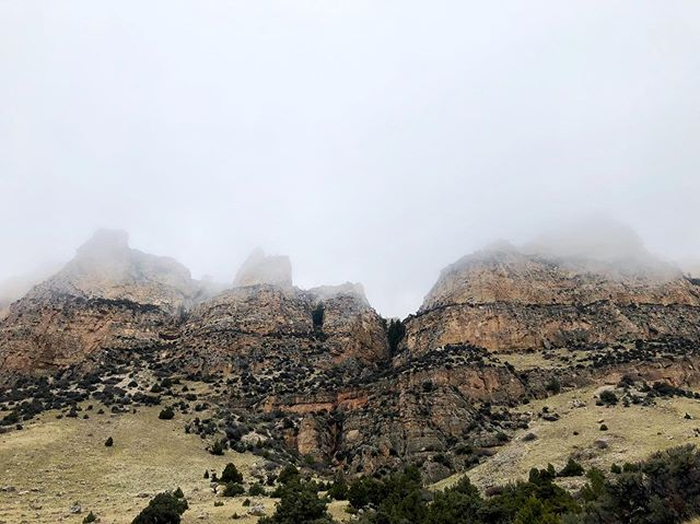 You can't like Wyoming by accident.