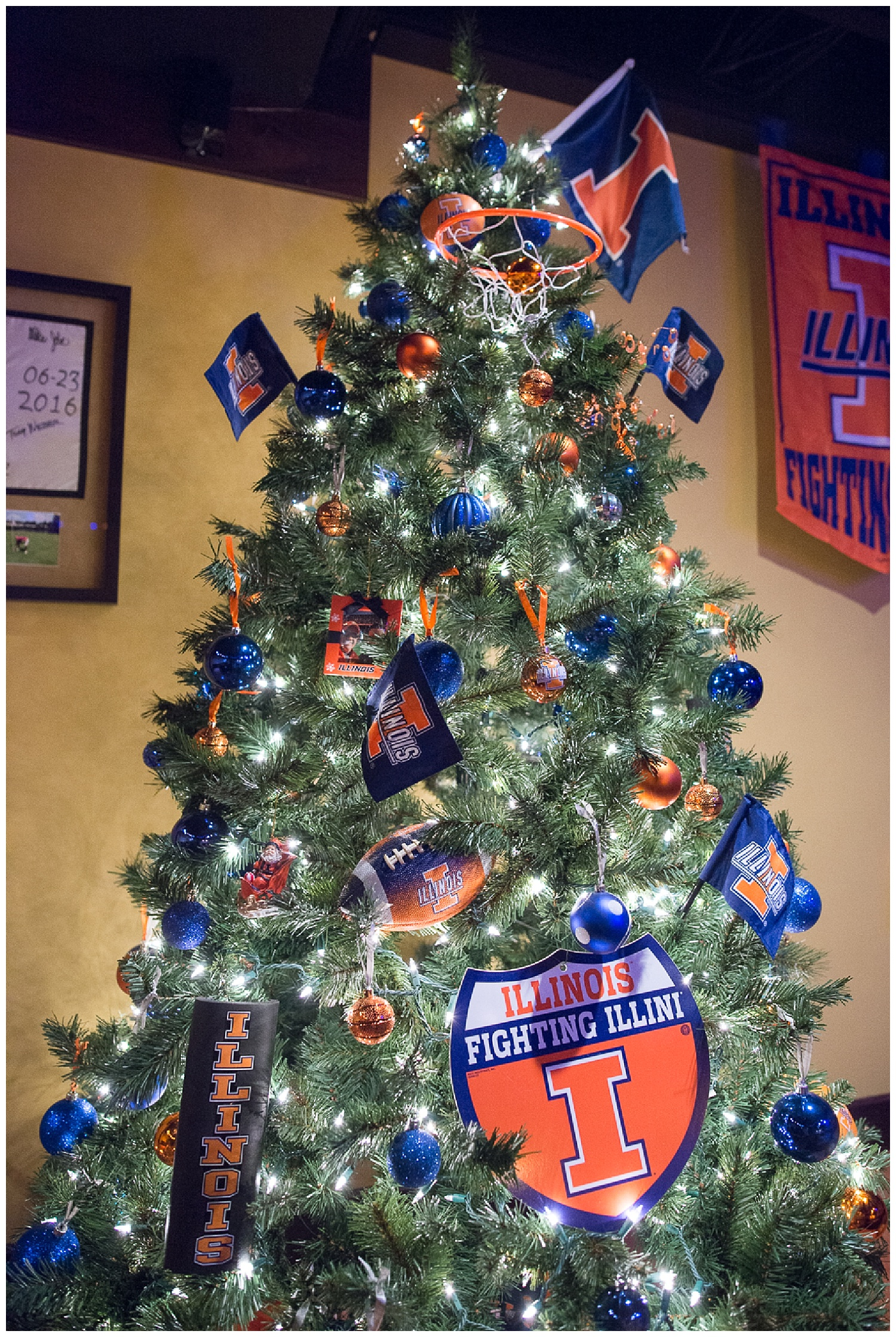 The U of I Tree is in the basement ready for the Braggin' Rights game.