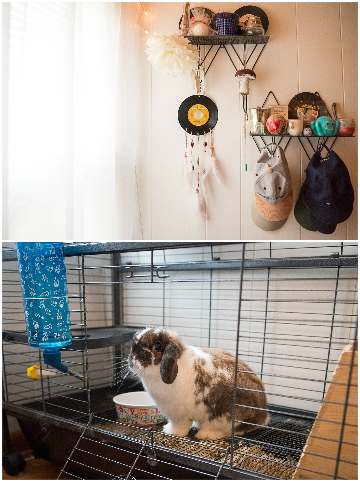 Light and airy.  The shelves on the wall came from Fresh Digs.  Mister the rabbit is in the cage.