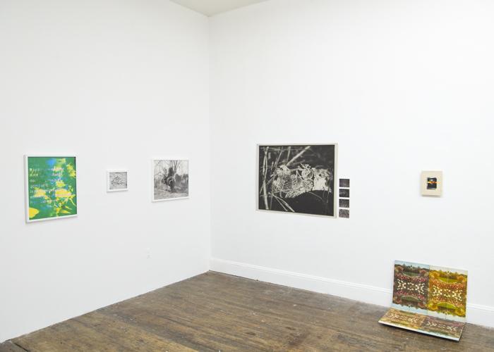 Swamp Thing, Exhibition, Bodega, May 4 - June 3, 2012