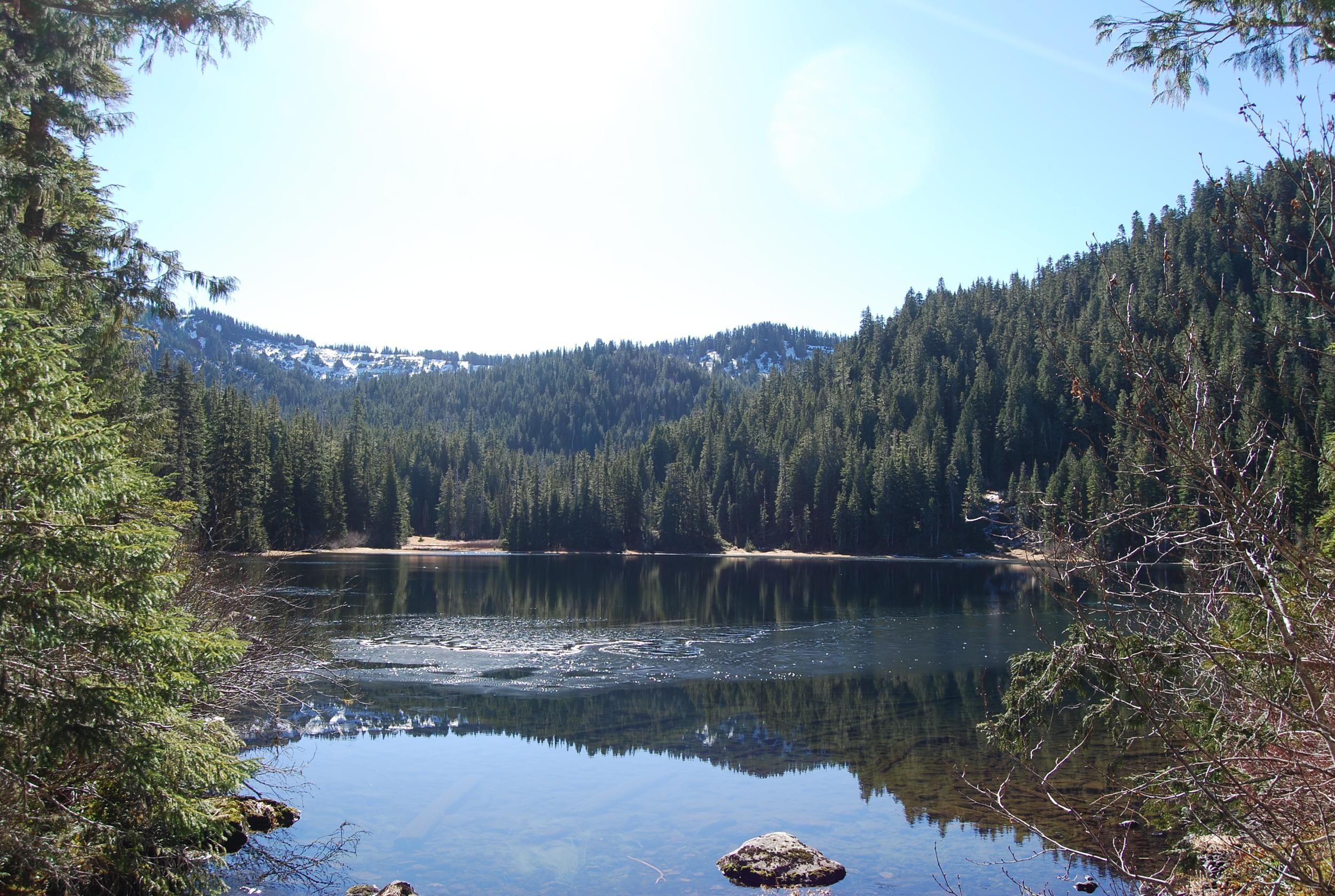 Deer Lake Viewpoint.jpg