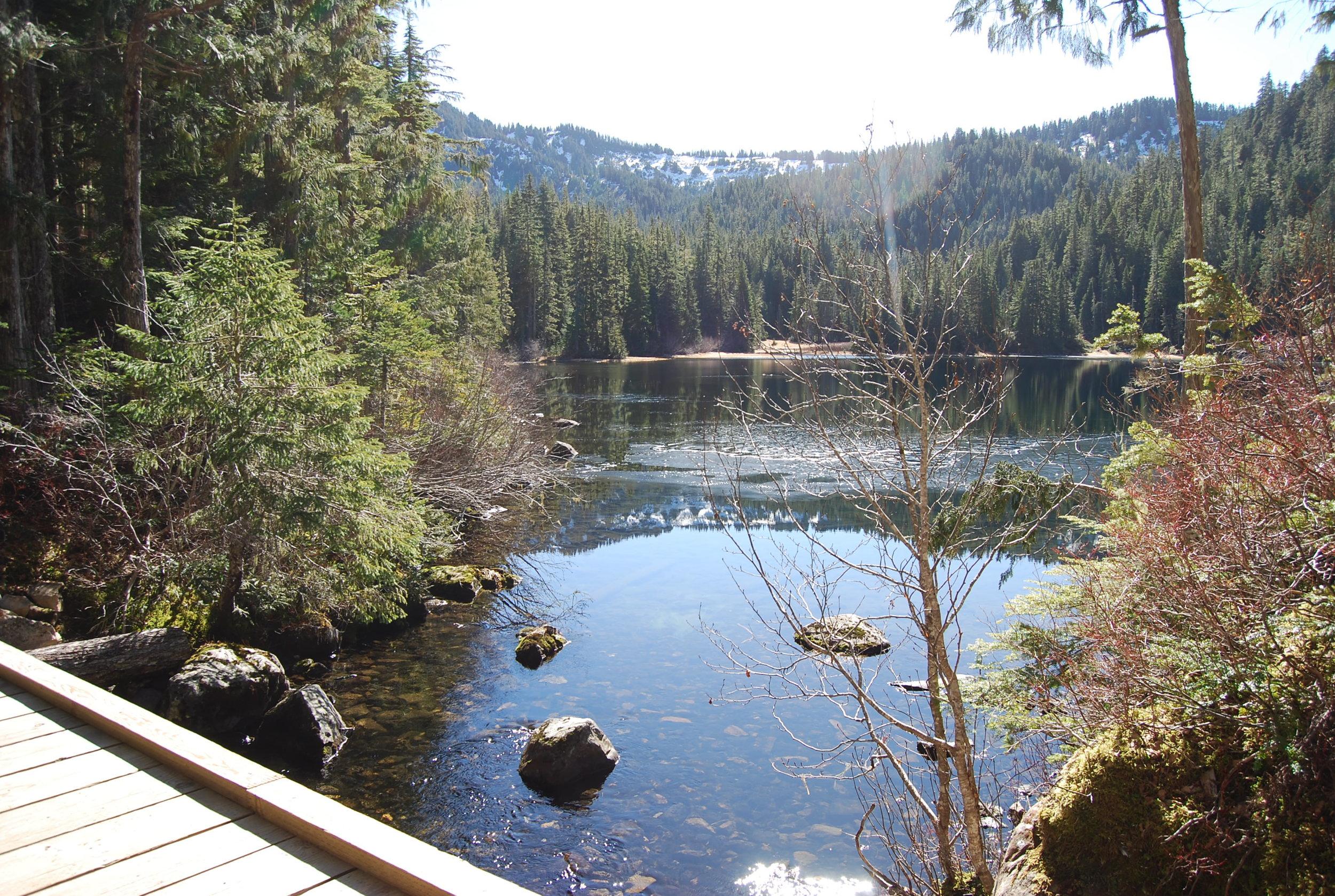 Deer Lake.jpg