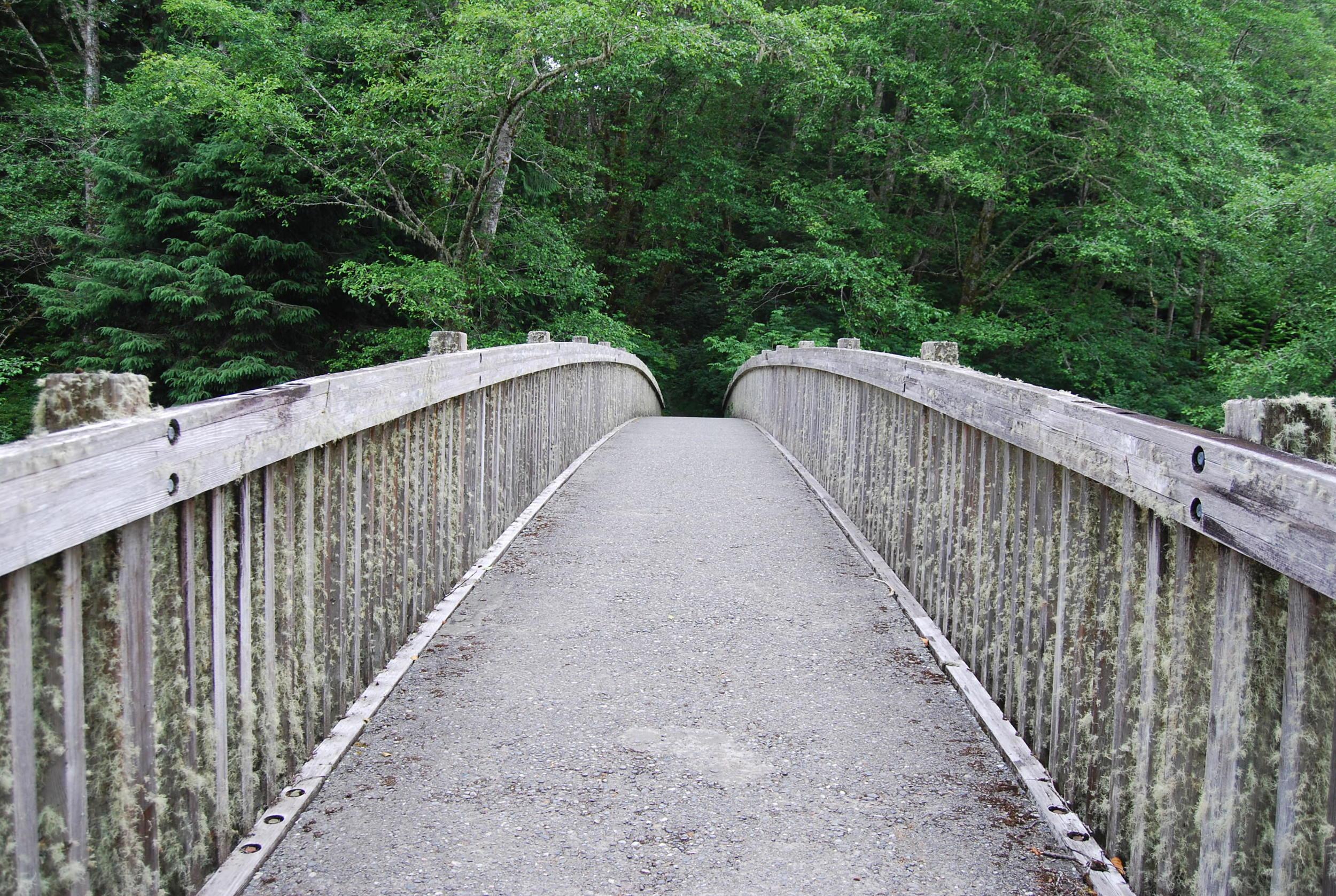 Ozette Bridge.jpg