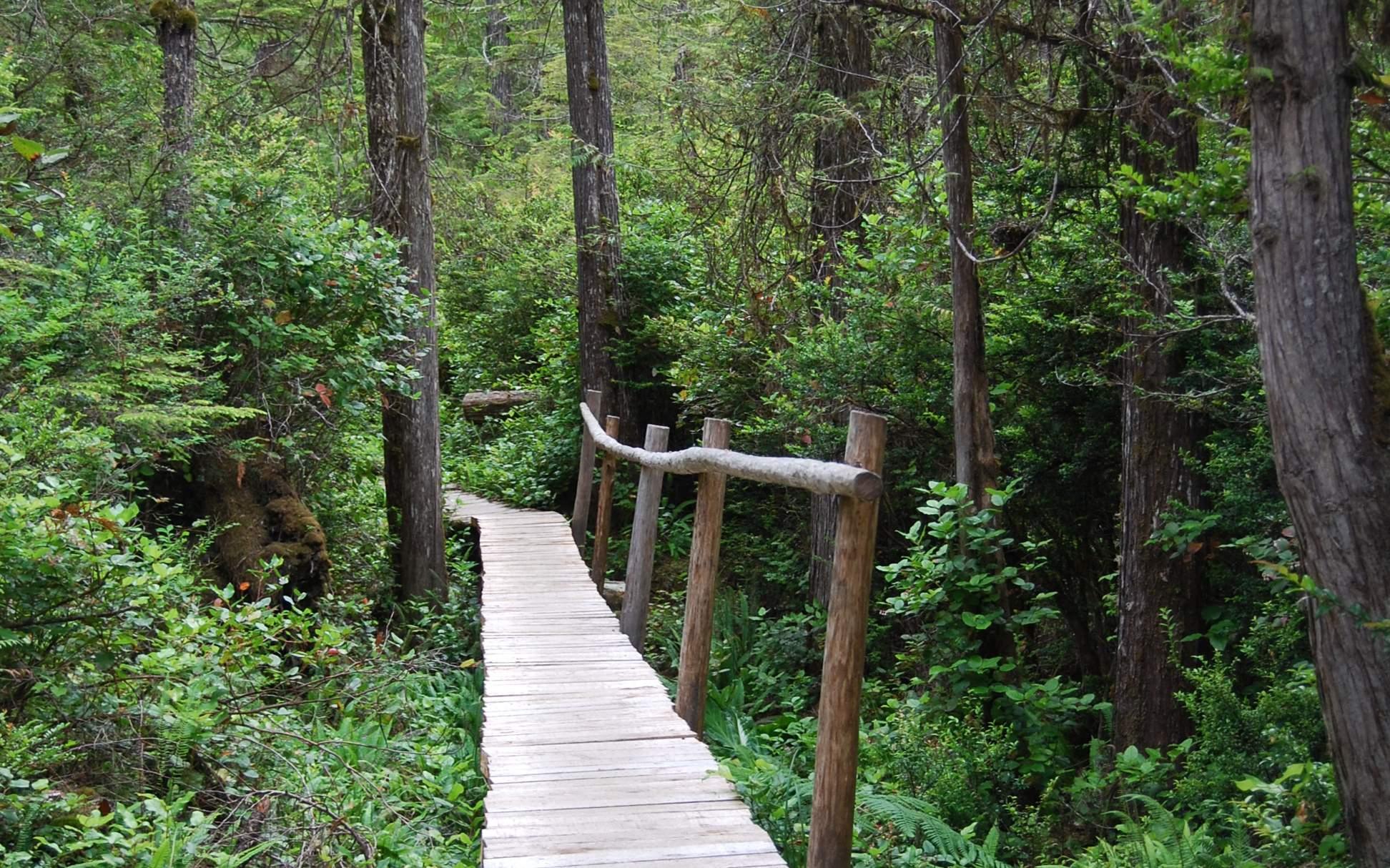 Boardwalk Trails.jpg