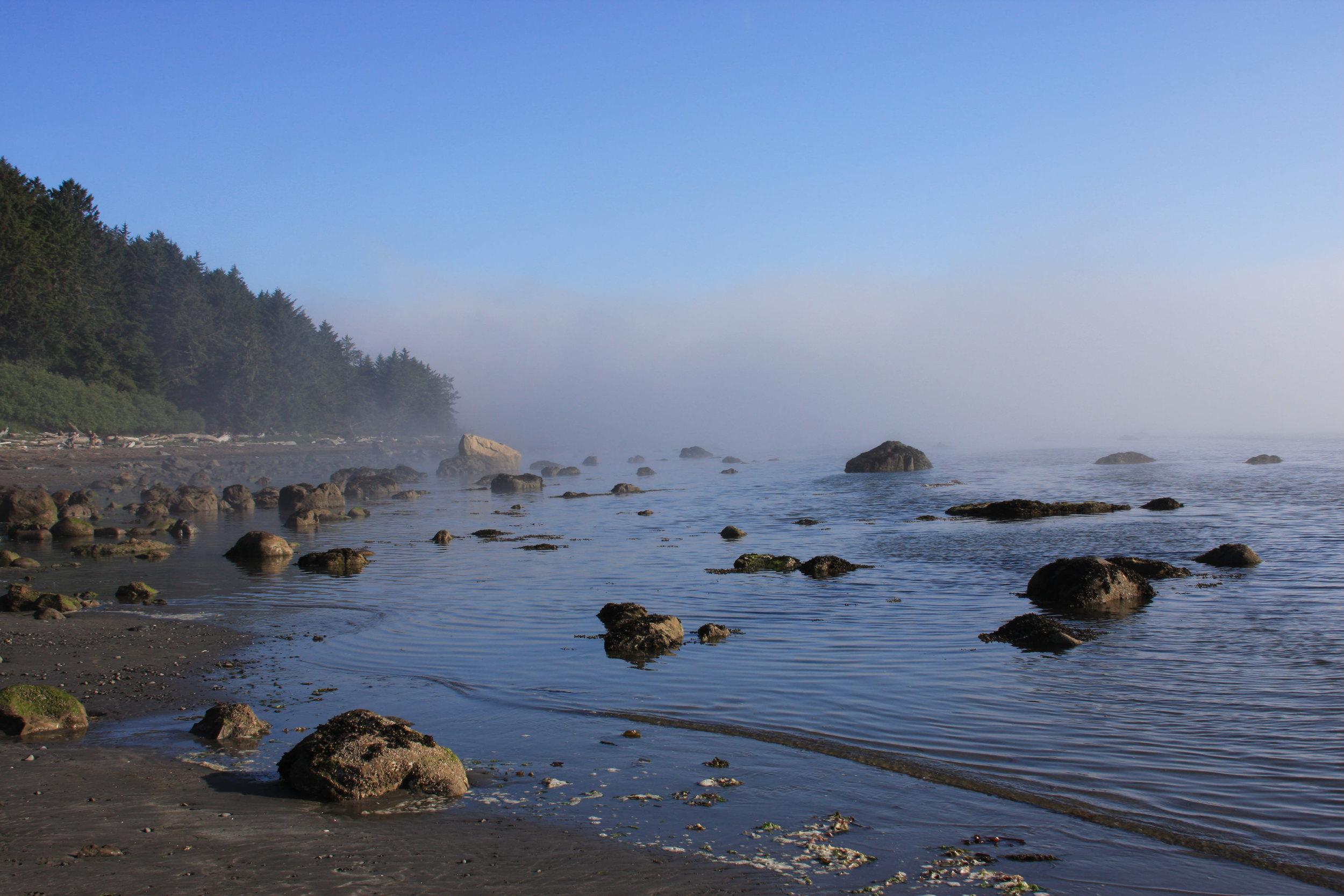 Pacific Coastline.jpg