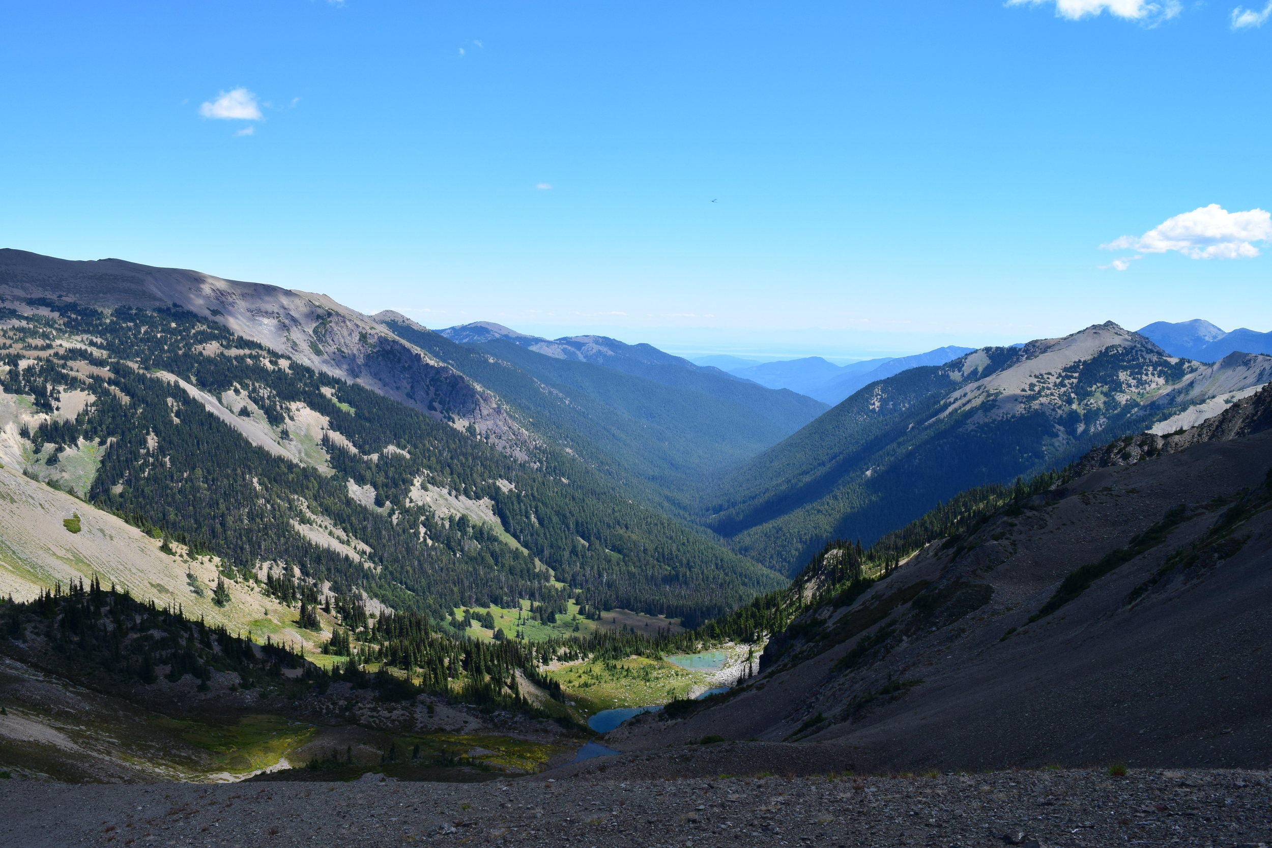 Northern Viewpoint.jpg